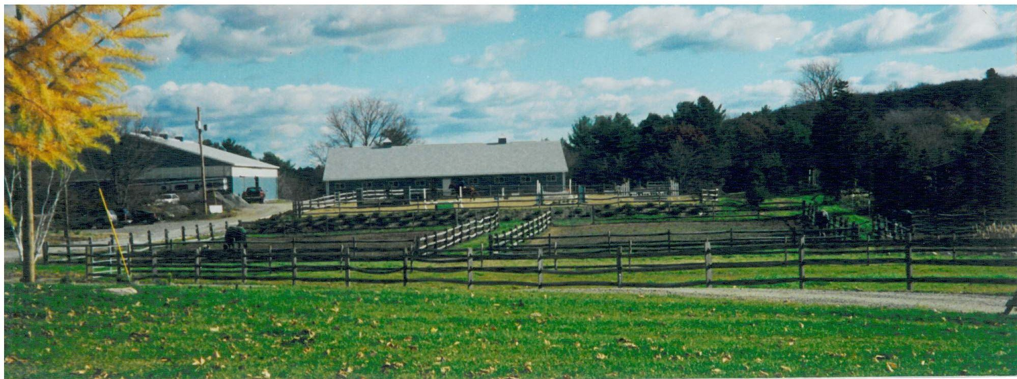 Back Bay is Equine Journal's Featured Farm