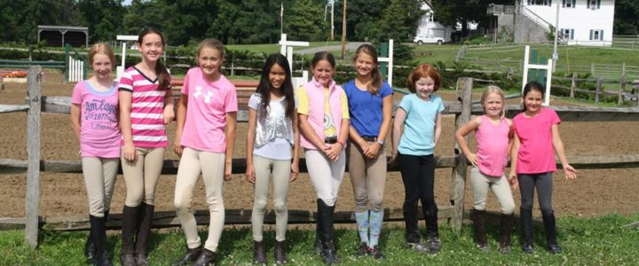 Back Bay Farm Summer Camp