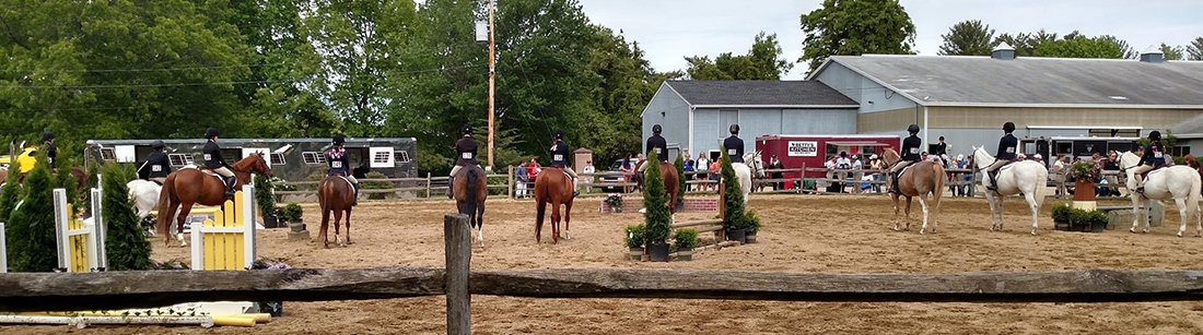 Horse Shows at Back Bay Farm