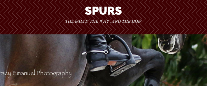 Spurs: the What, the Why, and the How